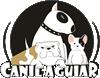 bulldog frances niteroi rj venda de filhotes desenvolvimento sites - bulldog frances niteroi rj venda de filhotes - Desenvolvimento de Sites em Niteroi – Criação Web